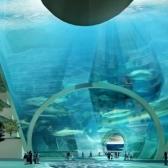 ville-sous-la-mer