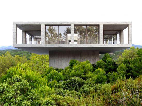 maison au-dessus des arbres