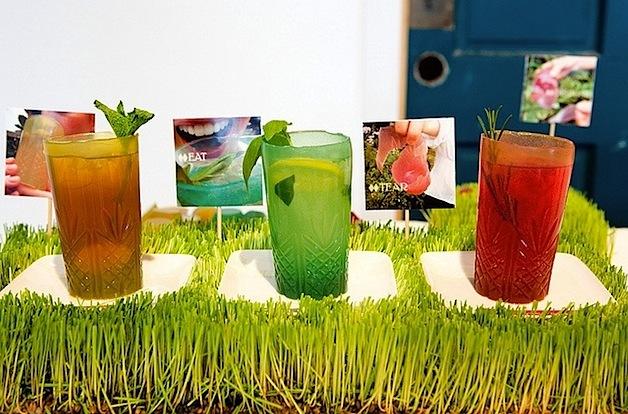 verre comestible jelloware