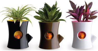 un vase avec un indicateur de niveau de l'eau
