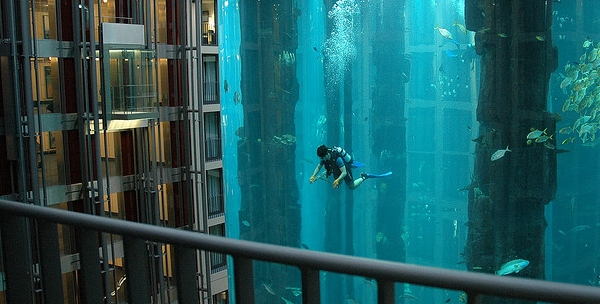 aquarium geant a berlin