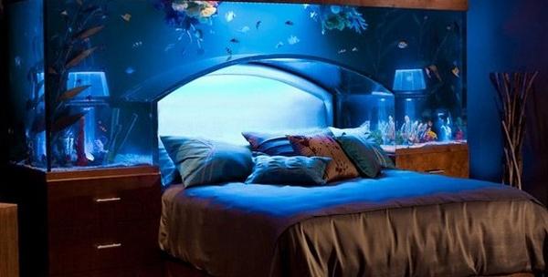 un aquarium design signé acrylic tank manufacturing