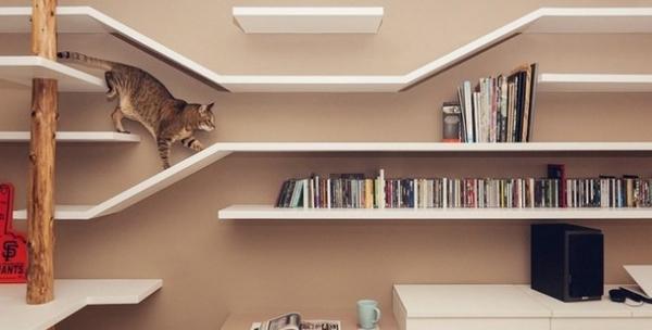 maison pour chats en bois