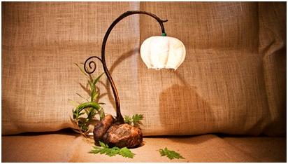 lampe d'appoint végétale