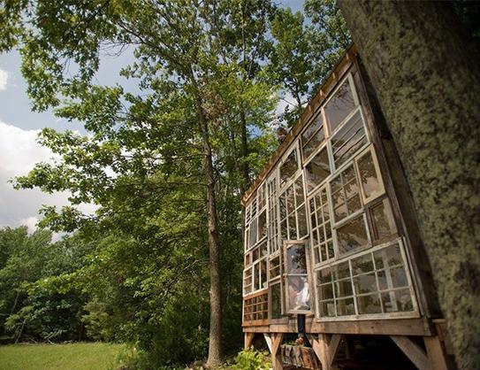 cabane vitrée en forêt