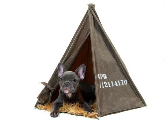 niche tente pour chiens