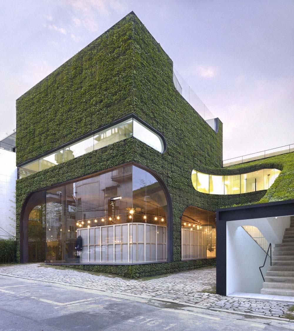 immeuble-vegetalise