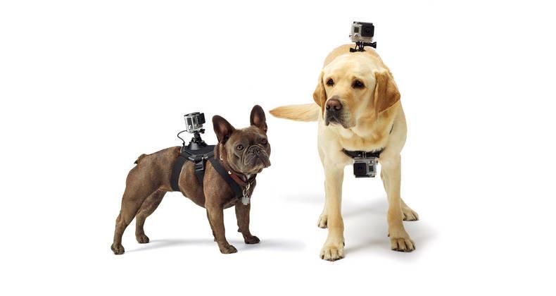 nouvelle caméra GoPro
