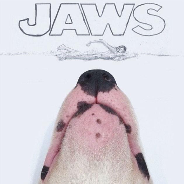 bull-terrier-cinema
