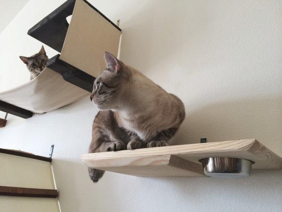 Meubles chat 2 0 - Meuble pour chat ...