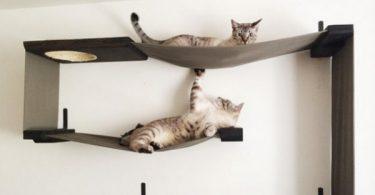 meubles pour chats