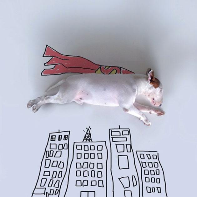 super-chien